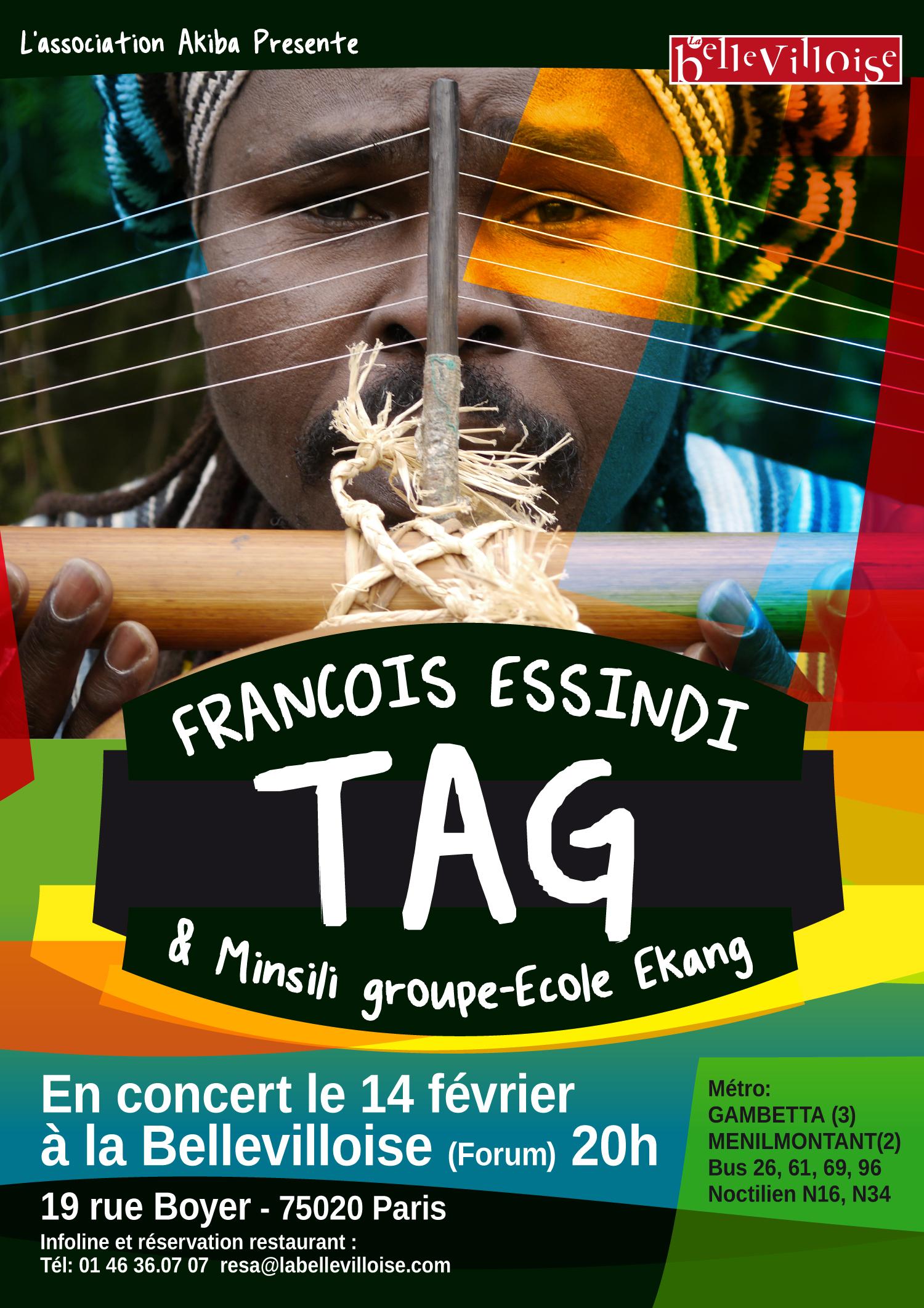 affiche-FrancoisEssindi-14fevrier2015